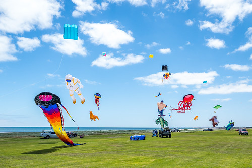 Kite Flying on Australia Day