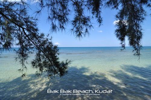 Interesting Flickr Photos Tagged Bakbak Picssr
