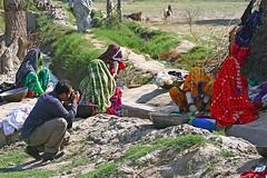 High Photo Risk (Iqbal.Khatri) Tags: travel portrait photography women village culture peoples lush cloths washing hamza thar ameer iqbal khatri travelandplaces photorisk