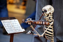 Siguiendo la partitura (Yo-rch) Tags: d50 skull marioneta puppet girona violin bones catalunya slideshow papel huesos mache cataluña calavera titere calaca wwwnemecommx nemecommx httpyorchimagekindcom