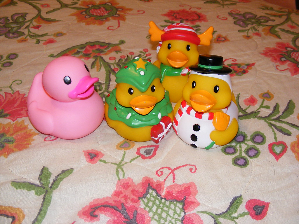 The World\'s newest photos of duck and infantino - Flickr Hive Mind