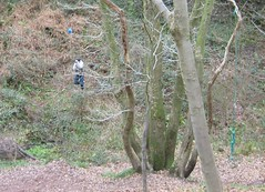 Rope swing (dandavie) Tags: swing swinging ropeswing leighwoods