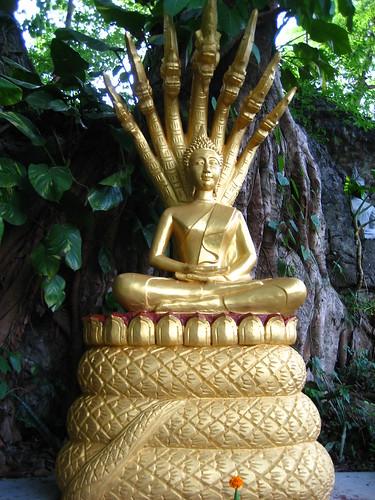 Sacred Naga