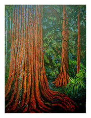 Redwoods , oil by M.Beek (2021) (Martin Beek) Tags: trees canada art woodland painting woods artist redwoods catalogue inventory intothewoods 2021 artworks oldwork theforest inthewoods originalwork mbeek mybackpages martinbeek yourmasterpaintings woodlandart woodlandandforest paintingsbymartinbeek ©martinbeek paintingsdrawingsandartworks art19802008 alifeinart bymartinbeek martinbeekart martinbeeksworks art19802010