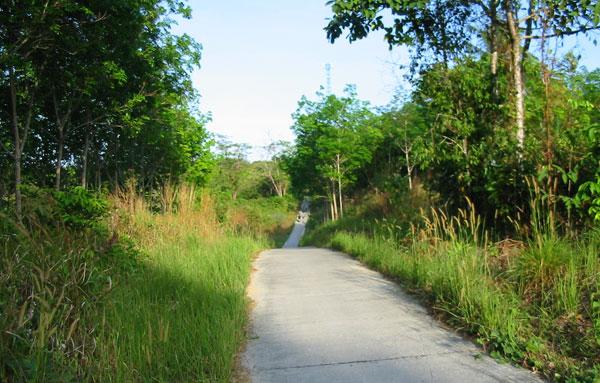 На острове Пайам (Koh Phayam) узкие дороги