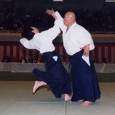 No-touch aikido: defence