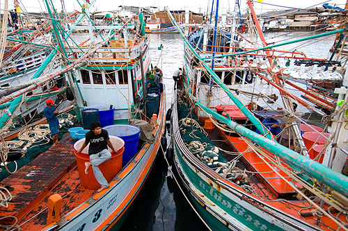 At Phuket Town's fishing port.