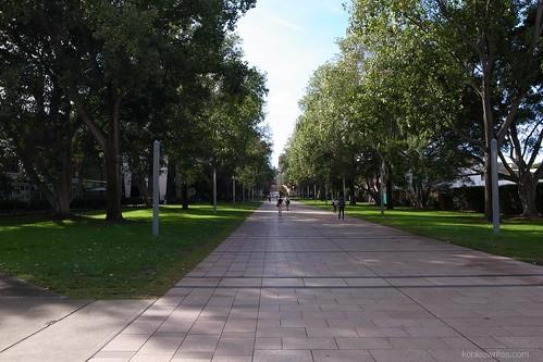 University Walk  001