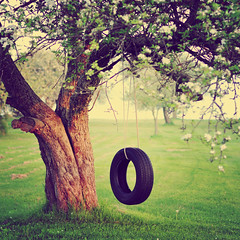 The old tire swing... (Tina M89) Tags: treetrunk greengrass appleblossoms whiteblossoms oldappletree hbw annagayactions tireswingintree