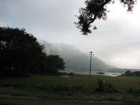 scenery mydenahalli 091107