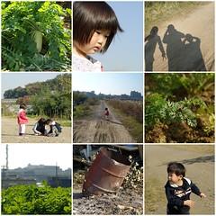 鶴見川の土手