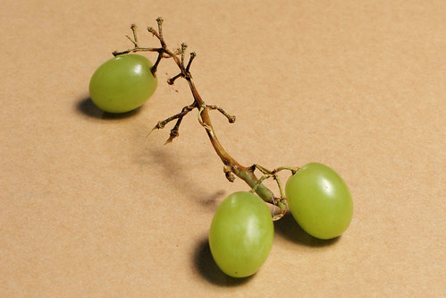 Grapes three