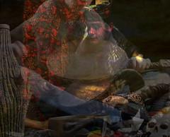 Shamanic  Healer