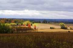 Farmland - South of Alliston (3) (Rock Steady Images) Tags: autumn ontario canada fall canon landscape eos 350d rebel xt cloudy farmland 100views 200views alliston sigma1770mmf2845dcmacro lenssigmadc1770mm bypaulchambers rocksteadyimages