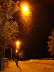into the flame (letgoandletsgo) Tags: sky night fly sony bugs flies n1 hinf letgoandletsgo