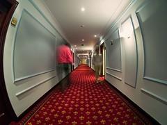 Overlook corridors (Sator Arepo) Tags: movie carpet hotel reflex carlton kubrick room corridor olympus fisheye overlook shining zuiko stanleykubrick redrum theshining e500 uro overlookhotel 8mmed zd8mmfish35 retofz080716 gettyimagesiberiaq3