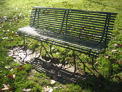 IMG_3520 (bluefootedbooby) Tags: parco bench autunno rugiada panchina