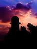واذا امتلى جوف الشجر بالعصافير .... طلبت من رب العباد يهديني (| Rashid AlKuwari | Qatar) Tags: mosque masjid doha qatar مسجد صلاة قطر دوحة الكواري alkuwari lkuwari