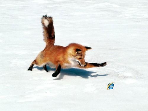 Firefox caccia IE
