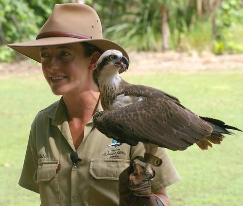 hot cute sexy ranger eagle nt wildlife australia darwin northernterritory akubrahat trevorpage