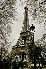 Trees and Tour (AndreaUPl) Tags: sky paris france fountain gold torre tour andrea eiffel cielo obelisco fontana francia oro parigi pedretti thebigone blueribbonwinner egizio andreaupl trocadro