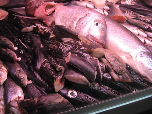 fish at Lisbon grill