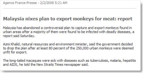 monkeys_malaysia2