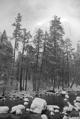 Yosemite in Winter (jvnunag) Tags: winter yosemite yosemitewinter