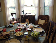 'What on earth is keeping that wine waiter?' (Allan1952) Tags: usa cats feline thelittledoglaughed