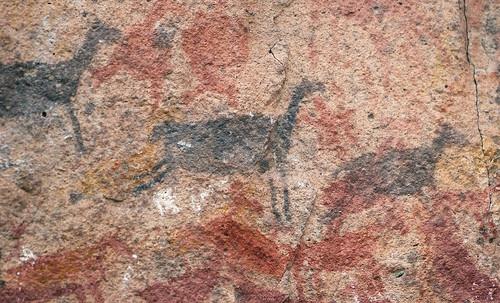 CuevaManosGuanaco9665.jpg