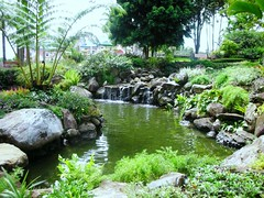 Man-Made Lagoon (jedibete) Tags: flowers cats moon fountain museum kid jump education candle child philippines kingdom highschool peoplespark pastor mentors acq recollection mindanao beed gumamela hcdc davaocity marilog quiboloy tamayong matigsalug datubago jedibete dcnhs holycrossofdavaocollege jedbete bsed palmagil prayermoumtain quirinostreet hcdceducation