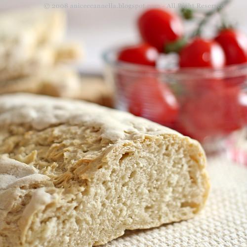 Bread & Tomato