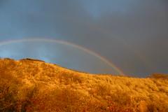 IMG_0915 (Psalm 19:1 Photography) Tags: hawaii oahu diamond head polynesian cultural center waikiki haleiwa laie waimea valley falls