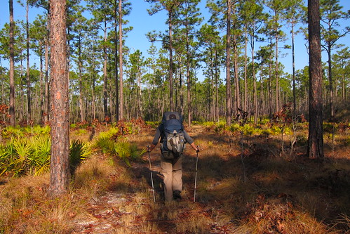 Florida Trail 096