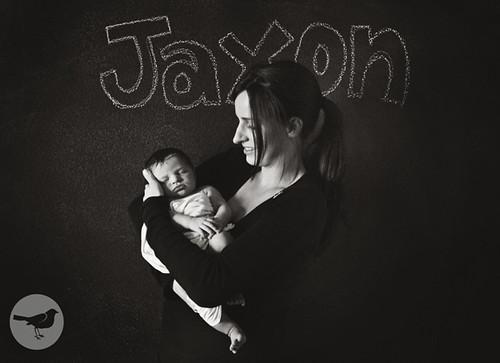 Jaxon 981
