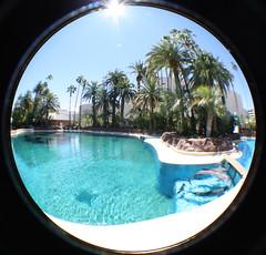 (jenesthesia) Tags: hotel lasvegas fisheye dolphins secretgarden themirage