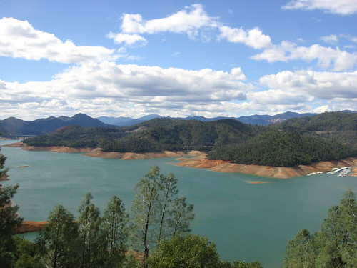 Lake Shasta, large marina