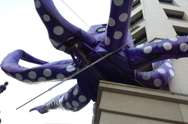 103107_octopus_underneath