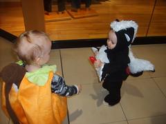 A new friend (Little Spooks) Tags: boy orange baby white black green halloween animal mall pumpkin fun kid toddler infant child jackolantern son anderson skunk costum