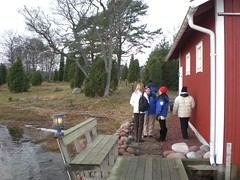 CIMG1702 (angela-hh) Tags: finland aland bluepenguins