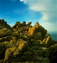 Monterey Rocks (Natural Light Seeker) Tags: ocean california ca sunset stilllife usa abstract 6x6 film beach nature rock mediumformat square monterey rocks natural noflash carmel bayarea norcal westcoast yashica twinlens yashica124 beachtravel