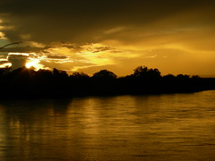 South Luangwa National Park, Zambia (Sara&Joachim) Tags: zambia southluangwanationalpark