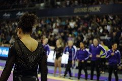 2017-02-11 UW vs ASU 174 (Susie Boyland) Tags: gymnastics uw huskies washington