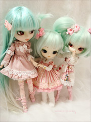 Pink Cuties (Paula ~) Tags: pink cute doll mint dal pullip cinnamoroll prunella maretti coolcat 27cm leekeworld 23cm 21cm rewigged rechipped obitsy cotindoll