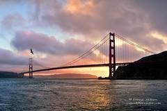 Golden Gate Bridge at Sunset - San Francisco California (Darvin Atkeson) Tags: world sanfrancisco california travel bridge sunset seascape reflection nature golden gate glow suspension famous marin flight pelican span darvin atkeson darv liquidmoonlightcom