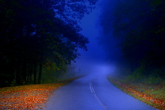 The Evening Mist ( D L Ennis) Tags: mist misty fog forest drive evening moody foggy blues soe blueridgeparkway shieldofexcellence superbmasterpiece infinestyle dlennis theeveningmist