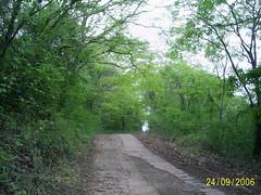 05 sitio  estrada usina nilceia gazzola brasil echapora (nilgazzola) Tags: de foto sp ou com tirada maquina echapora nilgazzola echaporaturismo photosbrazilbrasilnilgazzolanilceia