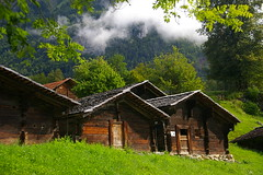 Bordes susses / Swiss mountain huts (SBA73) Tags: wood trees mountain alps verde green museum alpes switzerland madera bravo museu arboles suisse suiza hut arbres cabana museo montaa svizzera schweitz nube fusta openair cabaa verd montanya nuvol ballenberg hutte suis borda boira suizo suissa bordes abigfave anawesomeshot aplusphoto diamondclassphotographer colourartaward 100commentgroup leuropepittoresque