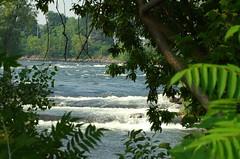DSC_4574-web (dufden) Tags: eau paysage rapide