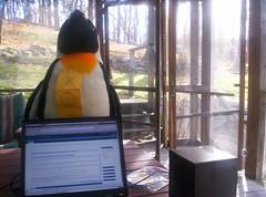Xo-Tux admiring T60 running Ubuntu 7.10